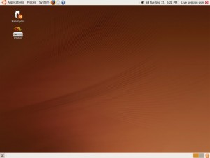 dual-ubuntu-live