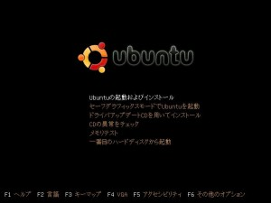 install_ubuntu-01